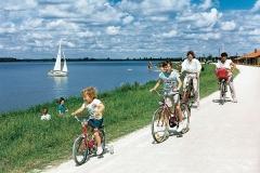 Radfahren (Radwegenetz um die Seen, E-Bike-Ladestationen, Fahrradverleih am See)