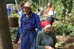 Hopfengartenfest Spalt